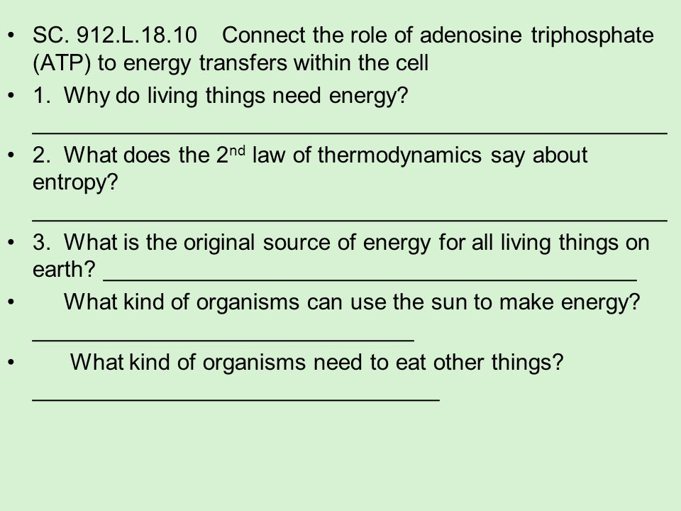 SC. 912.L.18.10 Connect the role of adenosine triphosphate (ATP) to energy transfers within the cell 1. Why do living things need energy? ____________
