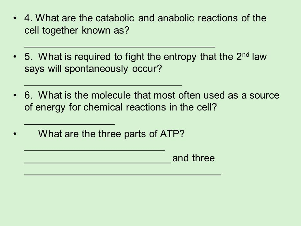 4. What are the catabolic and anabolic reactions of the cell together known as? __________________________________ 5. What is required to fight the en
