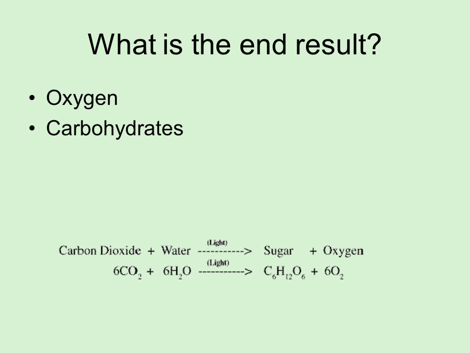 What is the end result? Oxygen Carbohydrates