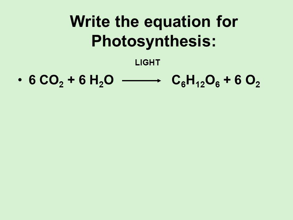 Write the equation for Photosynthesis: LIGHT 6 CO 2 + 6 H 2 O C 6 H 12 O 6 + 6 O 2