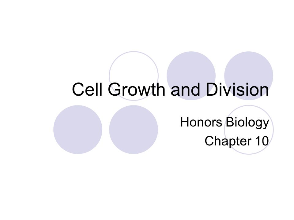 Cell Growth Living things grow larger due to an increase in cells Larger the cell, the more demands on the DNA and the more transport of water and nutrients across the membrane The surface area to volume ratio must also be maintained.