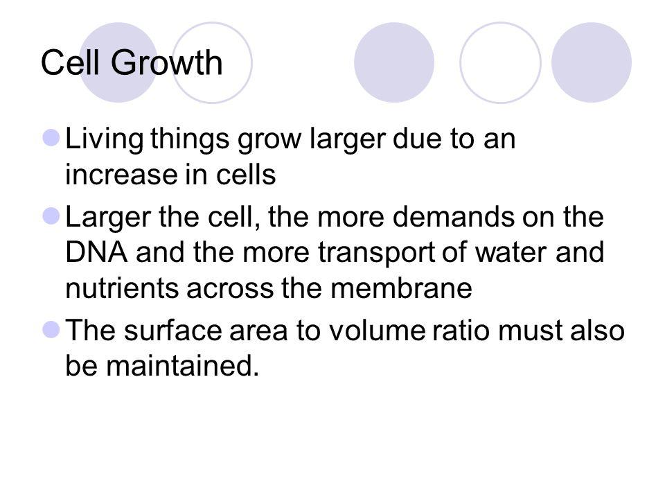 Mitosis and Cytokinesis Video Segment..\..\bio CD\Chapter 10A.mpg