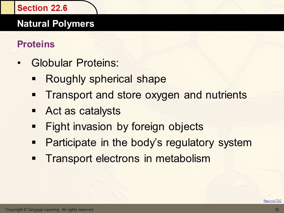 Section 22.6 Natural Polymers Return to TOC Copyright © Cengage Learning. All rights reserved 35 Proteins Globular Proteins: Roughly spherical shape T