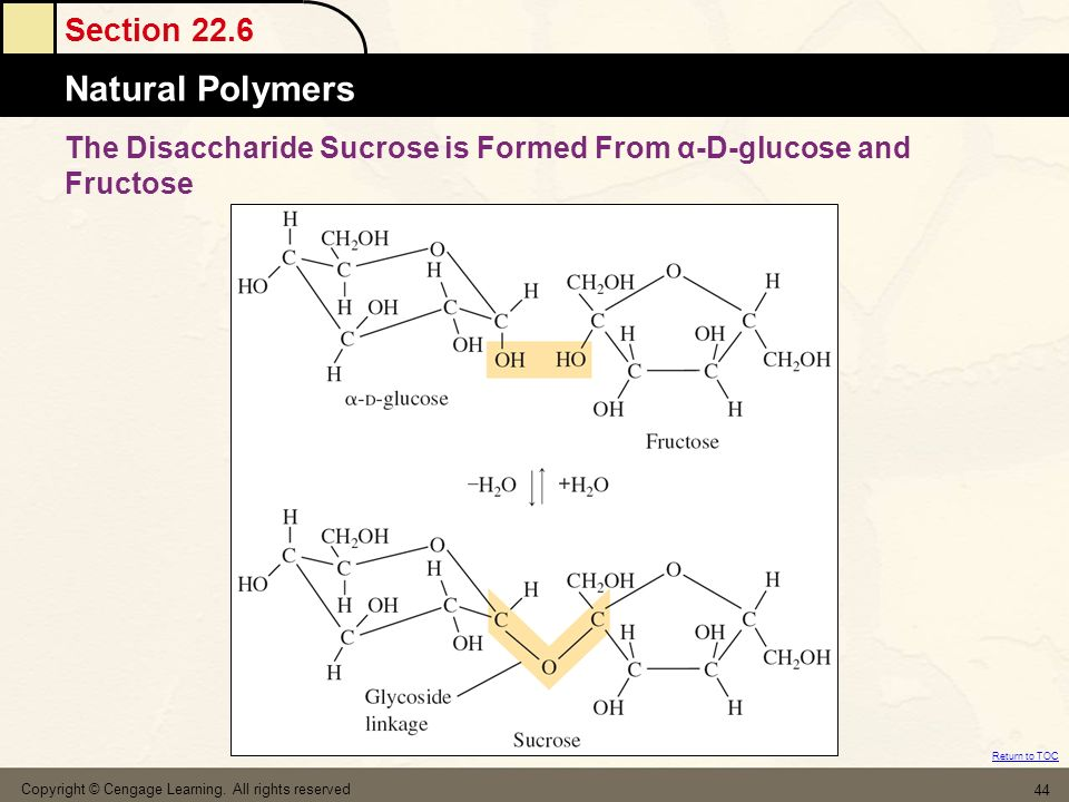 Section 22.6 Natural Polymers Return to TOC Copyright © Cengage Learning. All rights reserved 44 The Disaccharide Sucrose is Formed From α-D-glucose a