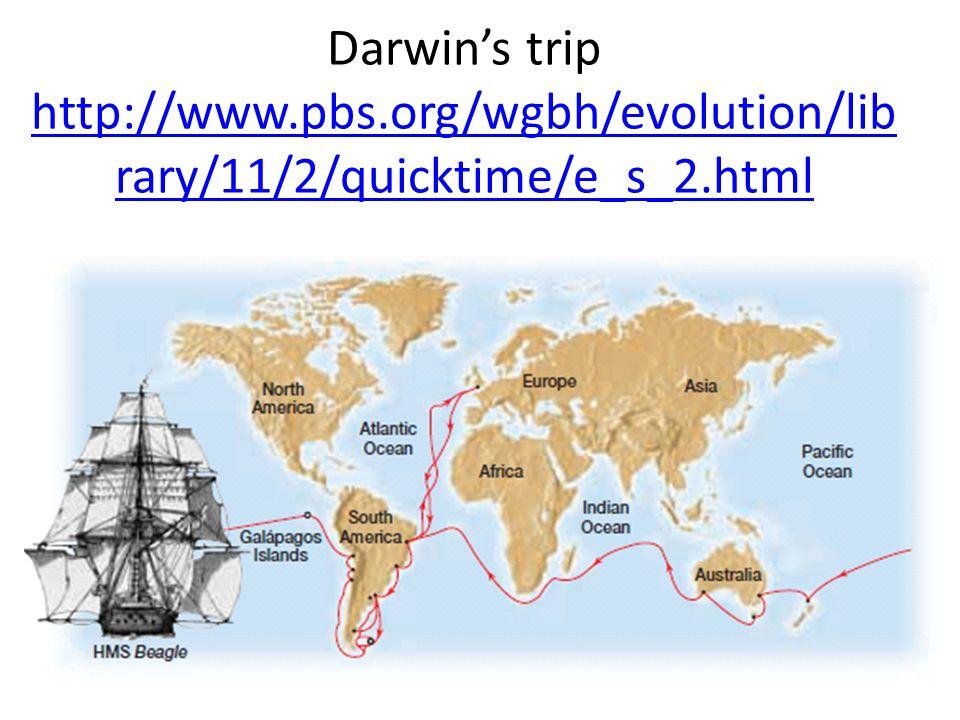 Darwins trip http://www.pbs.org/wgbh/evolution/lib rary/11/2/quicktime/e_s_2.html http://www.pbs.org/wgbh/evolution/lib rary/11/2/quicktime/e_s_2.html