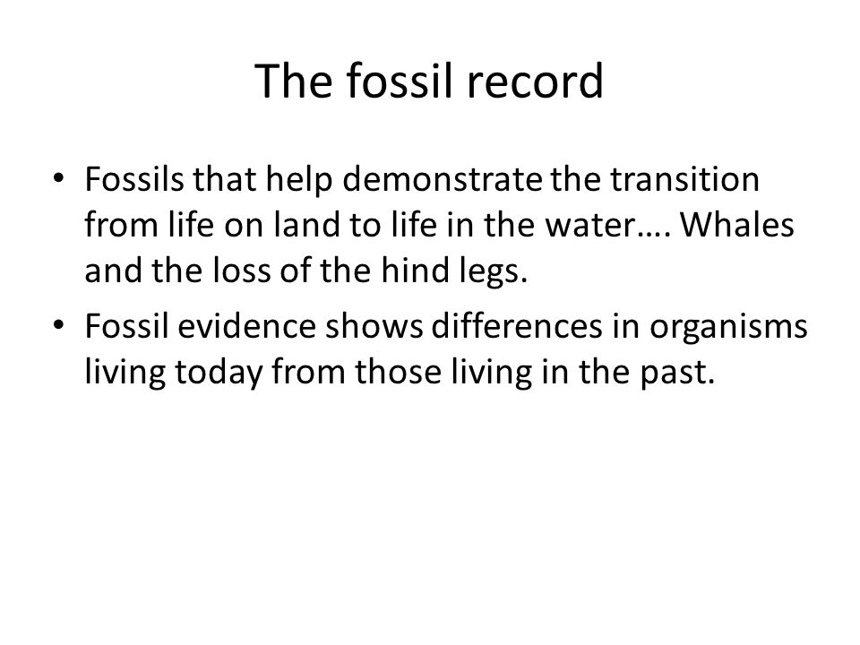 The fossil record Fossils that help demonstrate the transition from life on land to life in the water…. Whales and the loss of the hind legs. Fossil e
