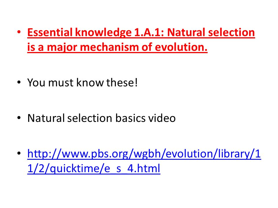 Essential knowledge 1.A.1: Natural selection is a major mechanism of evolution. You must know these! Natural selection basics video http://www.pbs.org