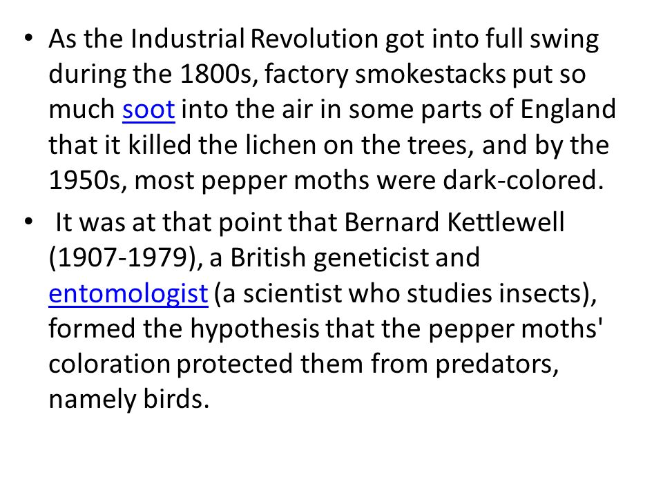 As the Industrial Revolution got into full swing during the 1800s, factory smokestacks put so much soot into the air in some parts of England that it