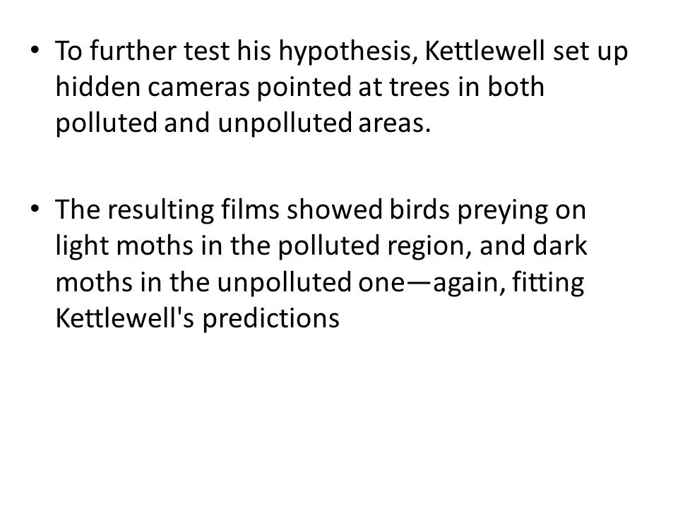 To further test his hypothesis, Kettlewell set up hidden cameras pointed at trees in both polluted and unpolluted areas. The resulting films showed bi