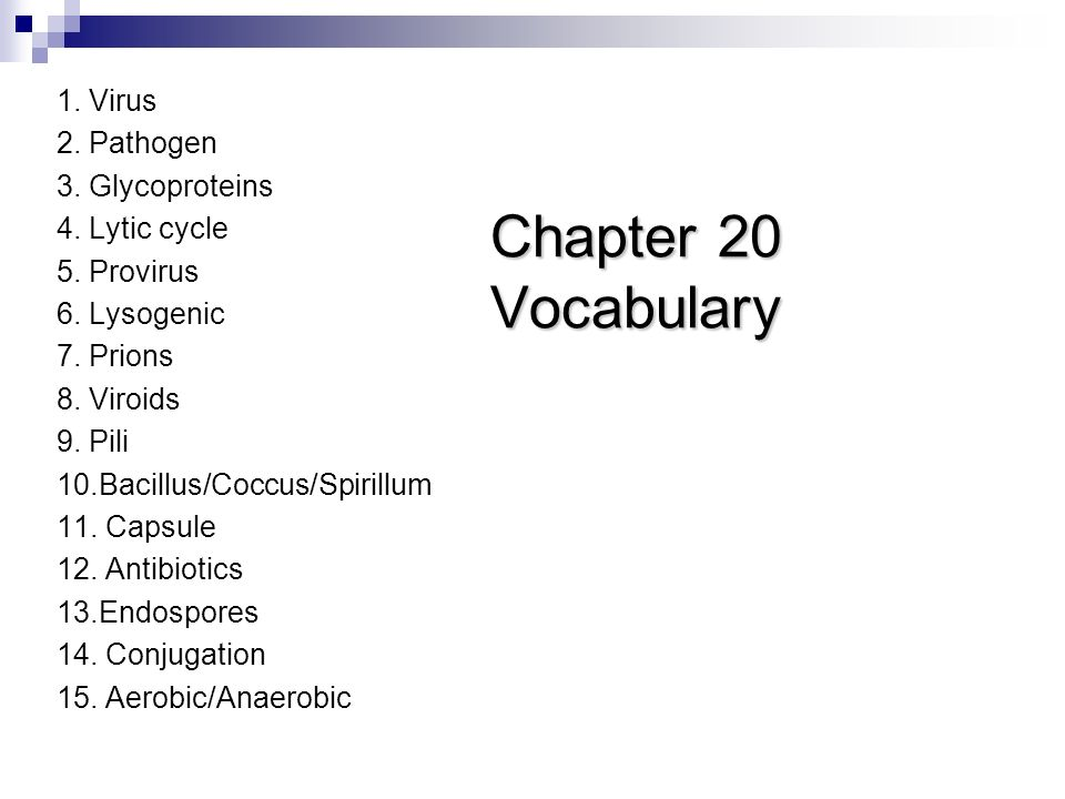Chapter 20 Vocabulary 1. Virus 2. Pathogen 3. Glycoproteins 4.