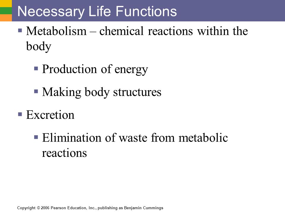 Copyright © 2006 Pearson Education, Inc., publishing as Benjamin Cummings Necessary Life Functions Metabolism – chemical reactions within the body Pro