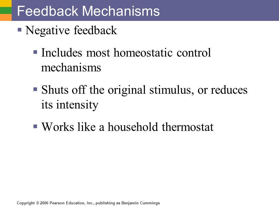 Copyright © 2006 Pearson Education, Inc., publishing as Benjamin Cummings Feedback Mechanisms Negative feedback Includes most homeostatic control mech