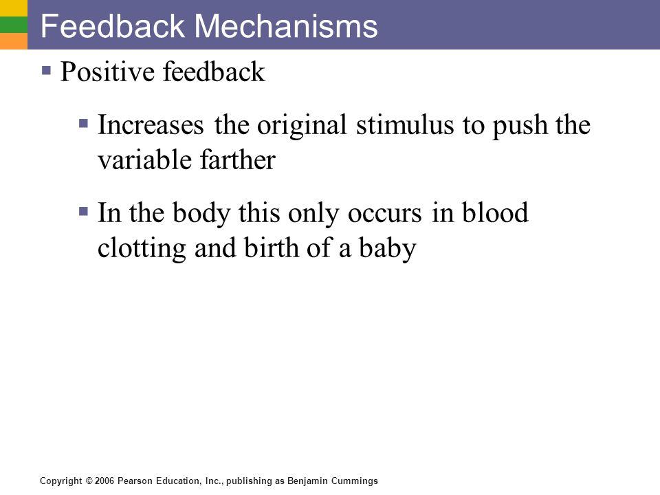 Copyright © 2006 Pearson Education, Inc., publishing as Benjamin Cummings Feedback Mechanisms Positive feedback Increases the original stimulus to pus