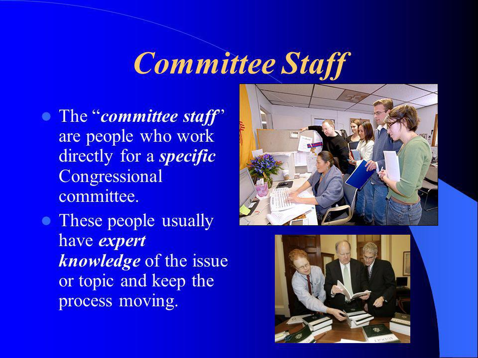 Committee Staff The committee staff are people who work directly for a specific Congressional committee.