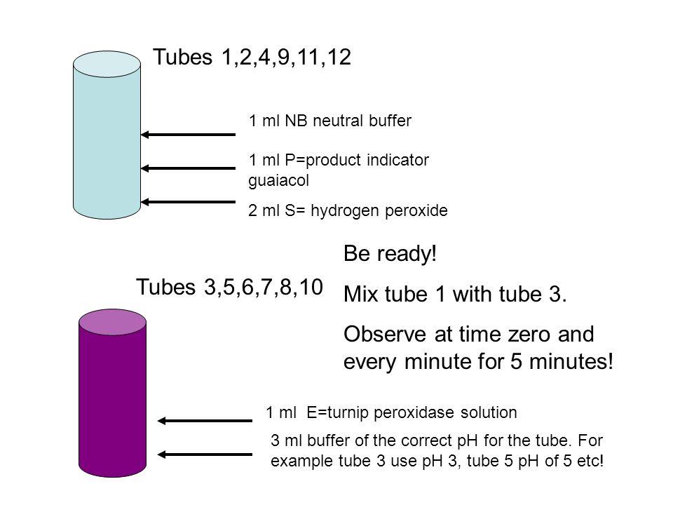 2 ml S= hydrogen peroxide 1 ml P=product indicator guaiacol Tubes 1,2,4,9,11,12 1 ml NB neutral buffer Tubes 3,5,6,7,8,10 1 ml E=turnip peroxidase sol