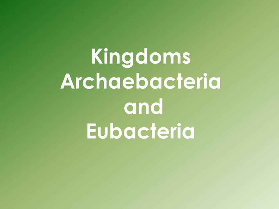 Kingdoms Archaebacteria and Eubacteria