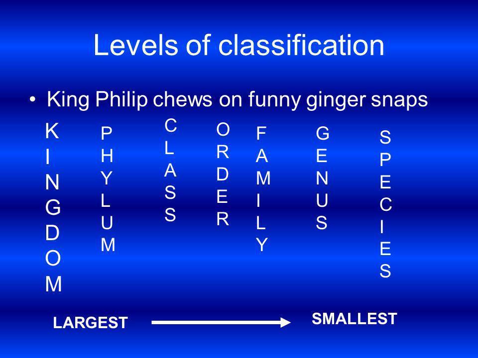 Levels of classification King Philip chews on funny ginger snaps KINGDOMKINGDOM PHYLUMPHYLUM CLASSCLASS ORDERORDER FAMILYFAMILY GENUSGENUS SPECIESSPEC