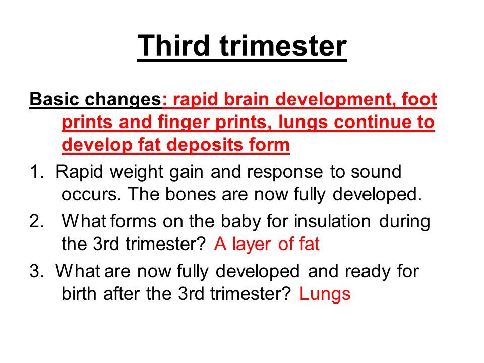 Third trimester Basic changes: rapid brain development, foot prints and finger prints, lungs continue to develop fat deposits form 1. Rapid weight gai