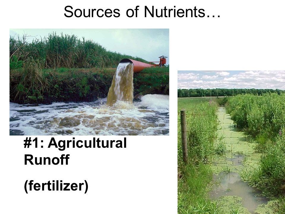 #1: Agricultural Runoff (fertilizer) Sources of Nutrients…