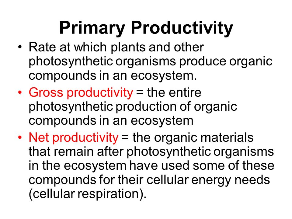 Lab 12: Dissolved Oxygen primary productivity –measured in 3 ways: amount of CO 2 used rate of sugar (biomass) formation rate of O 2 production