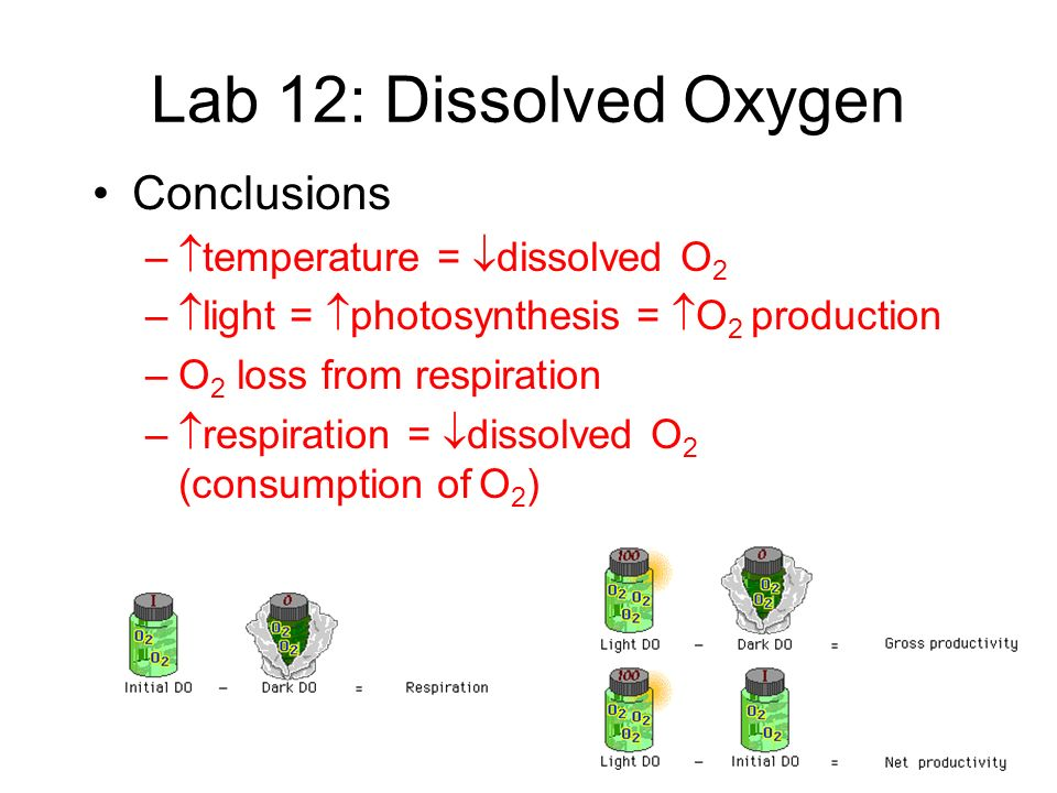 FRQ 2001 A biologist measured dissolved oxygen in the top 30 centimeters of a moderately eutrophic (mesotrophic) lake in the temperate zone.