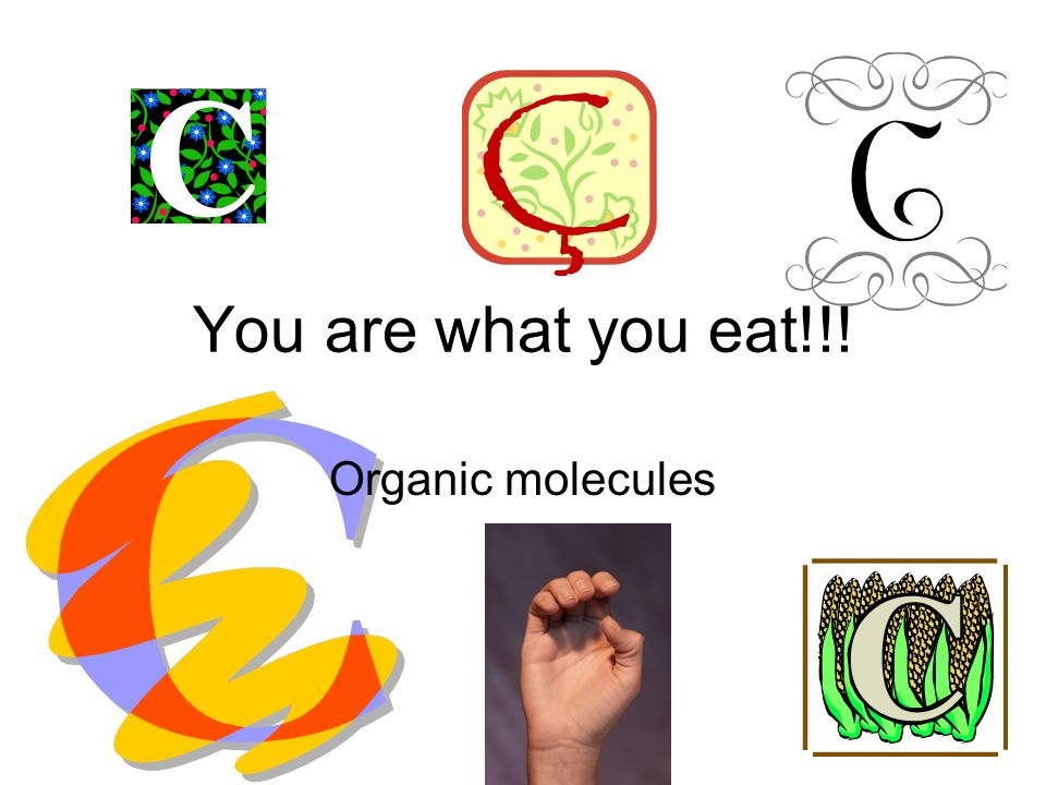 Section 4 vocabulary: (9 words) 1.organic chemistry 2.macromolecules, 3.polymers, 4.carbohydrates, 5.lipids, 6.protein, 7.amino acids, 8.nucleic acids, 9.nucleotides.