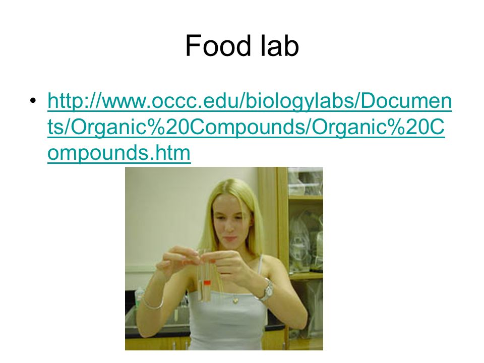 Food lab http://www.occc.edu/biologylabs/Documen ts/Organic%20Compounds/Organic%20C ompounds.htmhttp://www.occc.edu/biologylabs/Documen ts/Organic%20C