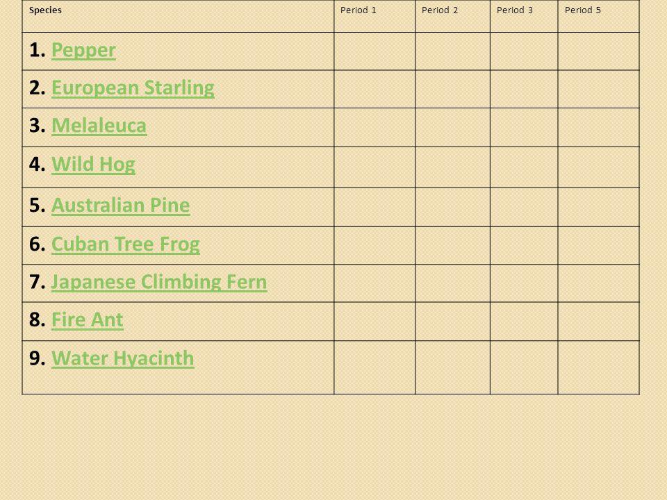SpeciesPeriod 1Period 2Period 3Period 5 1. PepperPepper 2. European StarlingEuropean Starling 3. MelaleucaMelaleuca 4. Wild HogWild Hog 5. Australian