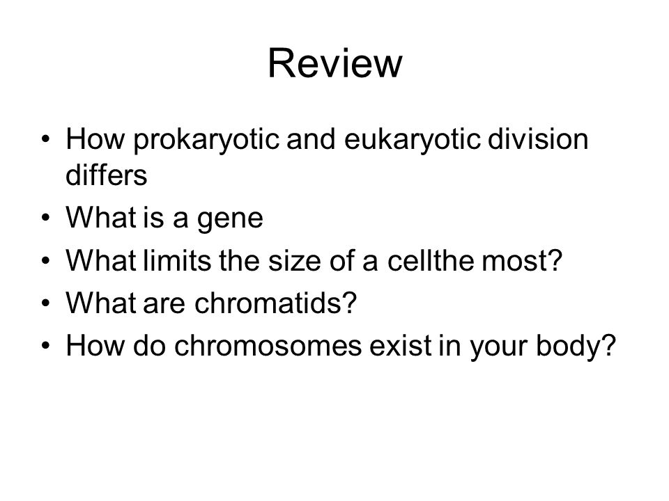 Review How prokaryotic and eukaryotic division differs What is a gene What limits the size of a cellthe most? What are chromatids? How do chromosomes