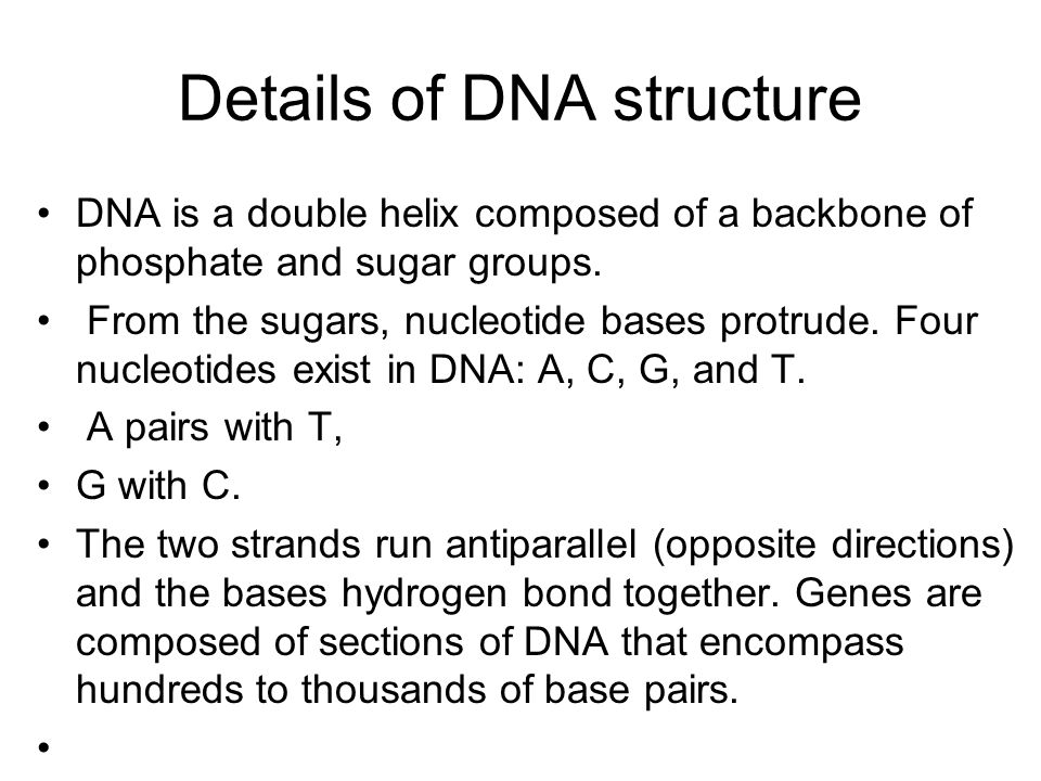 Details of DNA structure DNA is a double helix composed of a backbone of phosphate and sugar groups. From the sugars, nucleotide bases protrude. Four