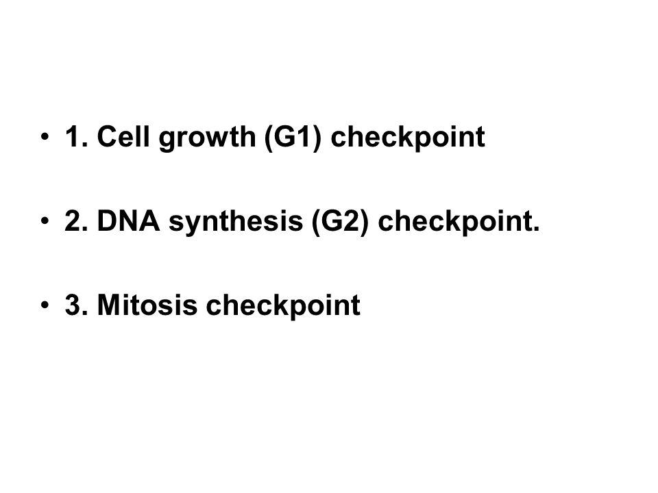1. Cell growth (G1) checkpoint 2. DNA synthesis (G2) checkpoint. 3. Mitosis checkpoint