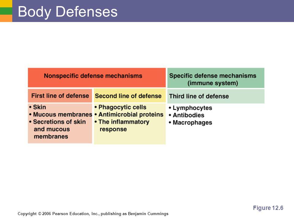 Copyright © 2006 Pearson Education, Inc., publishing as Benjamin Cummings Body Defenses Figure 12.6