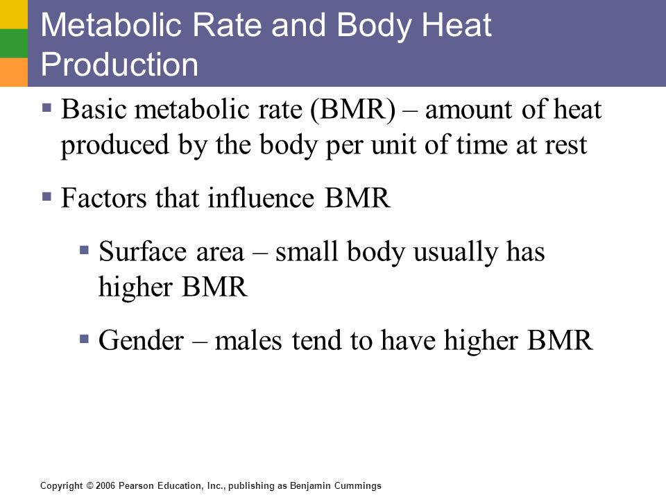 Copyright © 2006 Pearson Education, Inc., publishing as Benjamin Cummings Metabolic Rate and Body Heat Production Basic metabolic rate (BMR) – amount