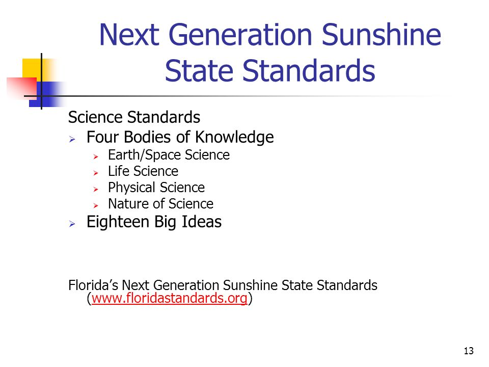 13 Next Generation Sunshine State Standards Science Standards Four Bodies of Knowledge Earth/Space Science Life Science Physical Science Nature of Science Eighteen Big Ideas Floridas Next Generation Sunshine State Standards (www.floridastandards.org)www.floridastandards.org