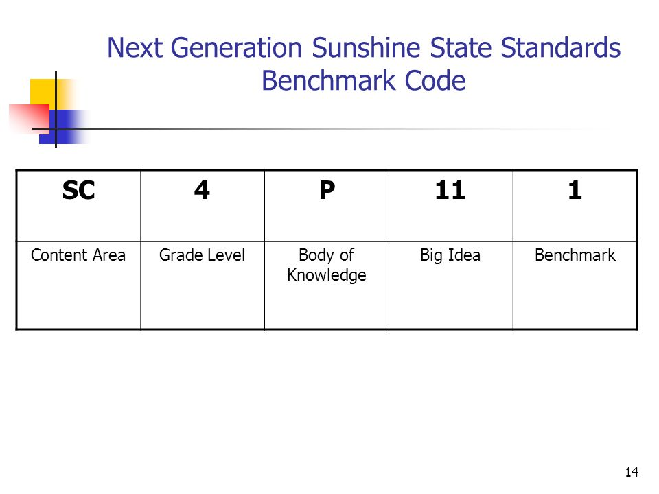 14 Next Generation Sunshine State Standards Benchmark Code SC4P111 Content AreaGrade LevelBody of Knowledge Big IdeaBenchmark