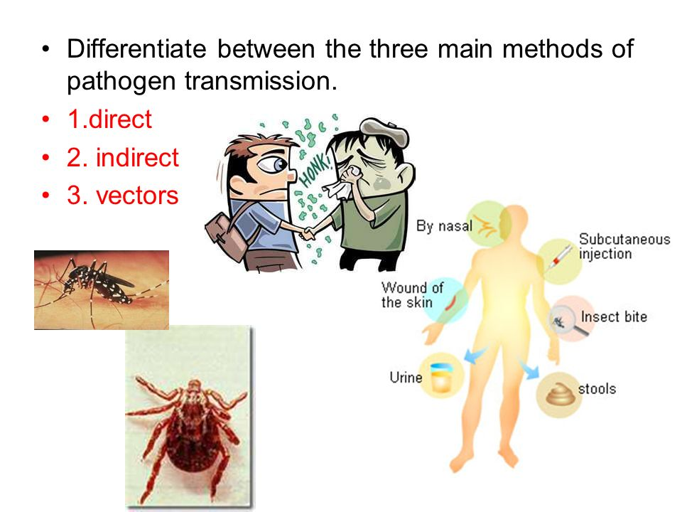 Differentiate between the three main methods of pathogen transmission. 1.direct 2. indirect 3. vectors