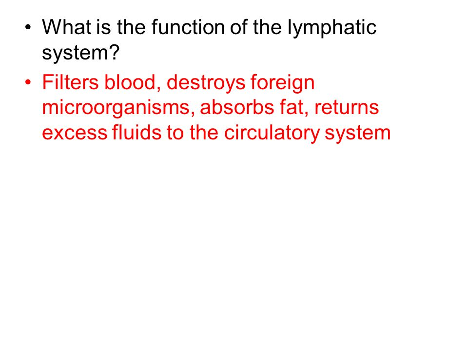 What is the function of the lymphatic system? Filters blood, destroys foreign microorganisms, absorbs fat, returns excess fluids to the circulatory sy