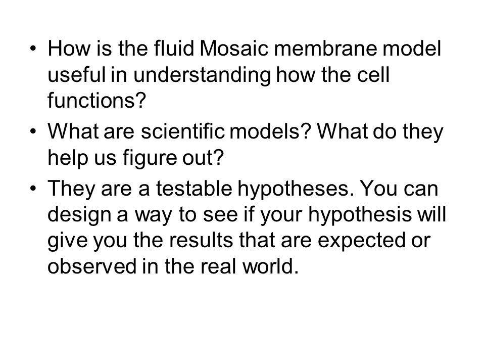 How is the fluid Mosaic membrane model useful in understanding how the cell functions? What are scientific models? What do they help us figure out? Th
