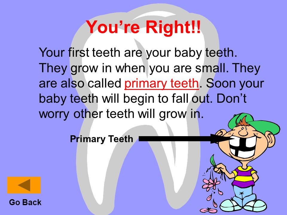 Sorry thats not correct!!! Use the hint below. Your first teeth are your baby teeth. They grow in when you are small. They are also called primary tee