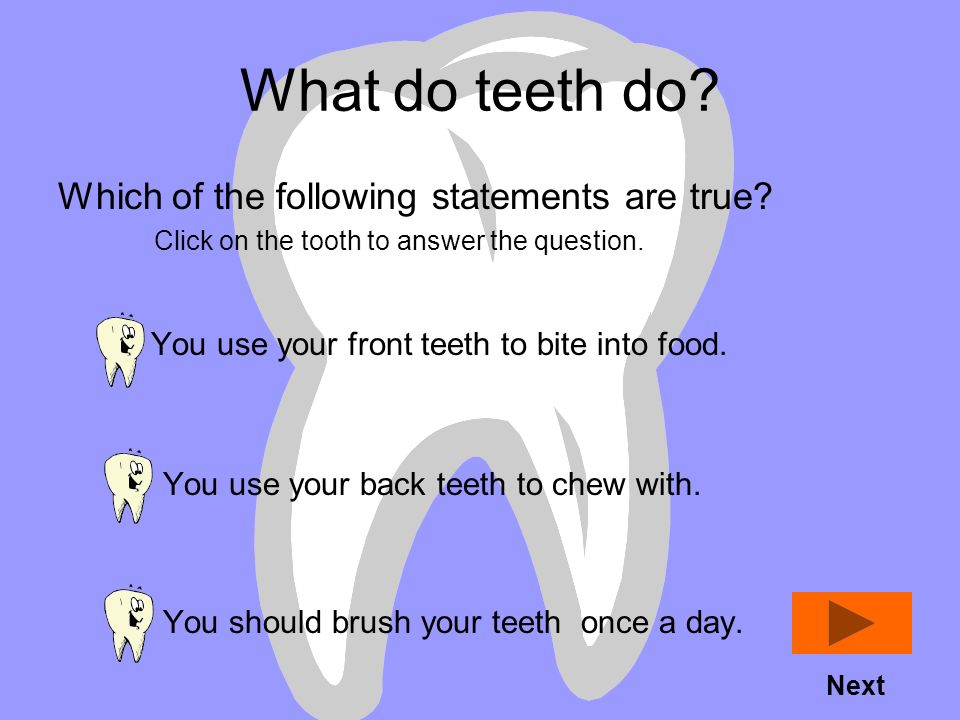 Lesson Overview Introduction: You use your teeth when you eat. Your teeth are not all the same. You use different teeth for different things. Thats wa