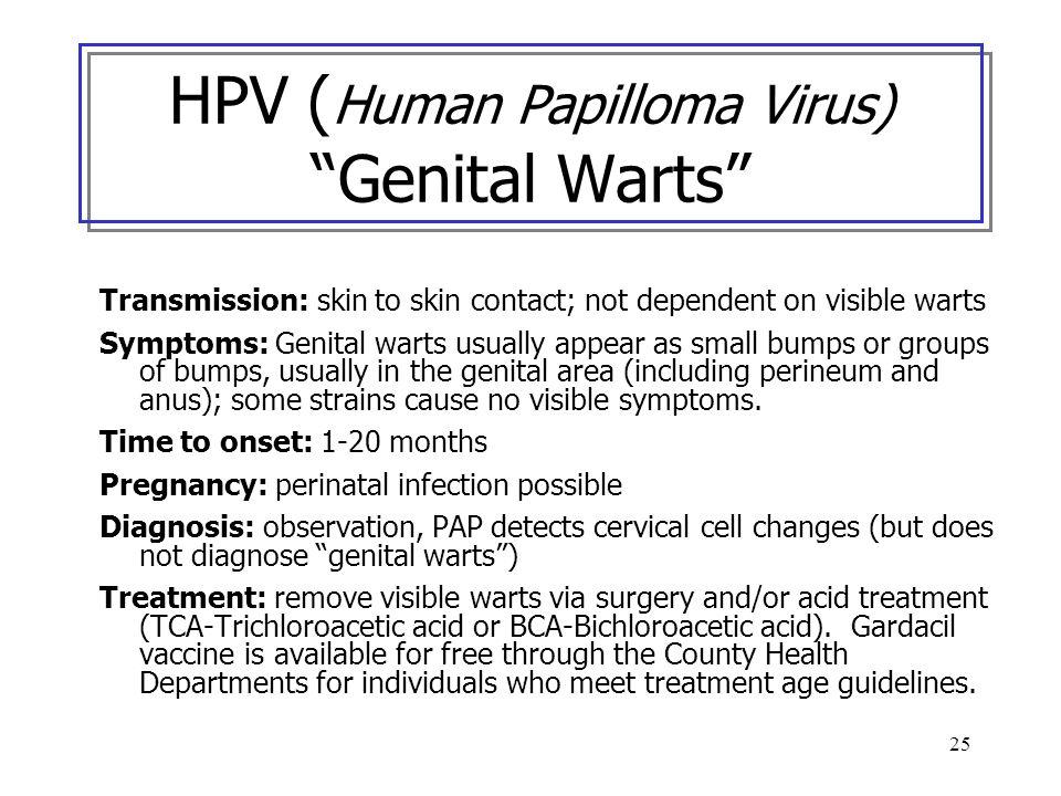 25 HPV ( Human Papilloma Virus) Genital Warts Transmission: skin to skin contact; not dependent on visible warts Symptoms: Genital warts usually appea