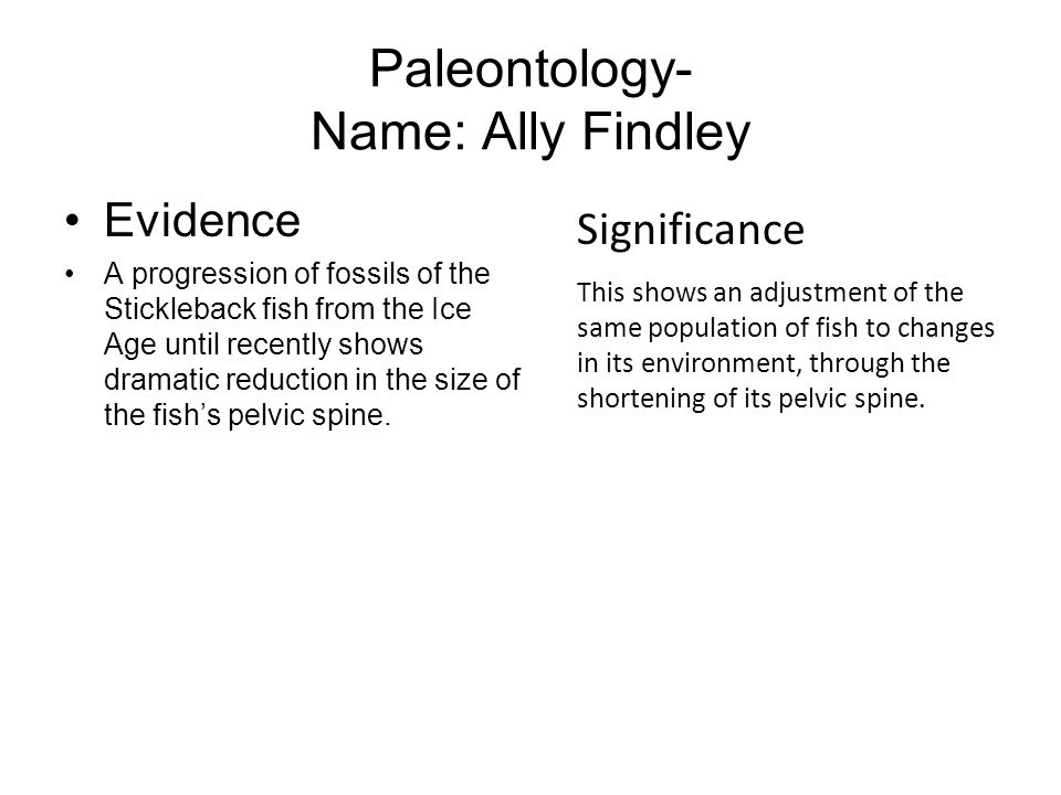 Paleontology- Name: Ally Findley Evidence A progression of fossils of the Stickleback fish from the Ice Age until recently shows dramatic reduction in