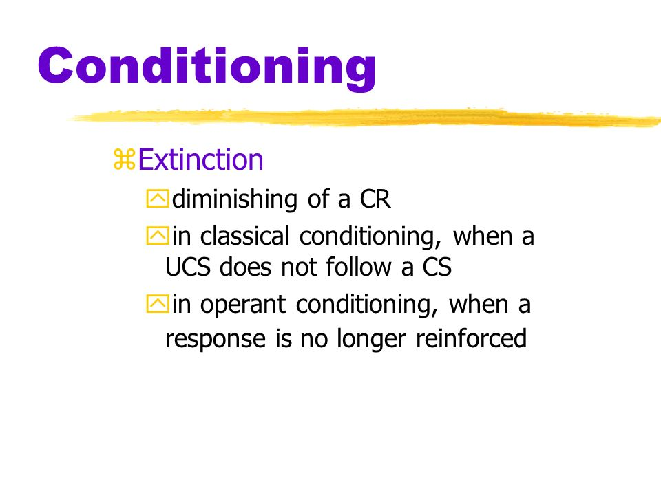 Conditioning zAcquisition ythe initial stage of learning, during which a response is established and gradually strengthened yin classical conditioning