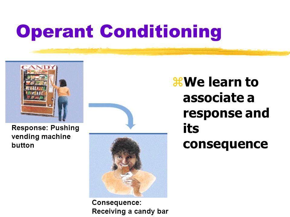 Operant Conditioning zWe learn to associate a response and its consequence Response: Pushing vending machine button Consequence: Receiving a candy bar