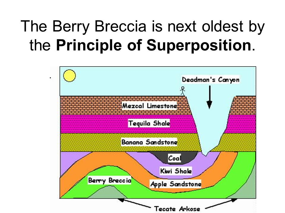 The Berry Breccia is next oldest by the Principle of Superposition.
