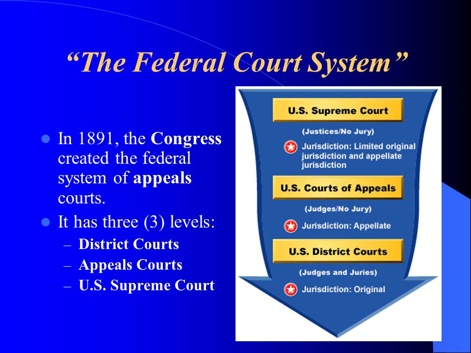 The Federal Court System In 1891, the Congress created the federal system of appeals courts. It has three (3) levels: – District Courts – Appeals Cour