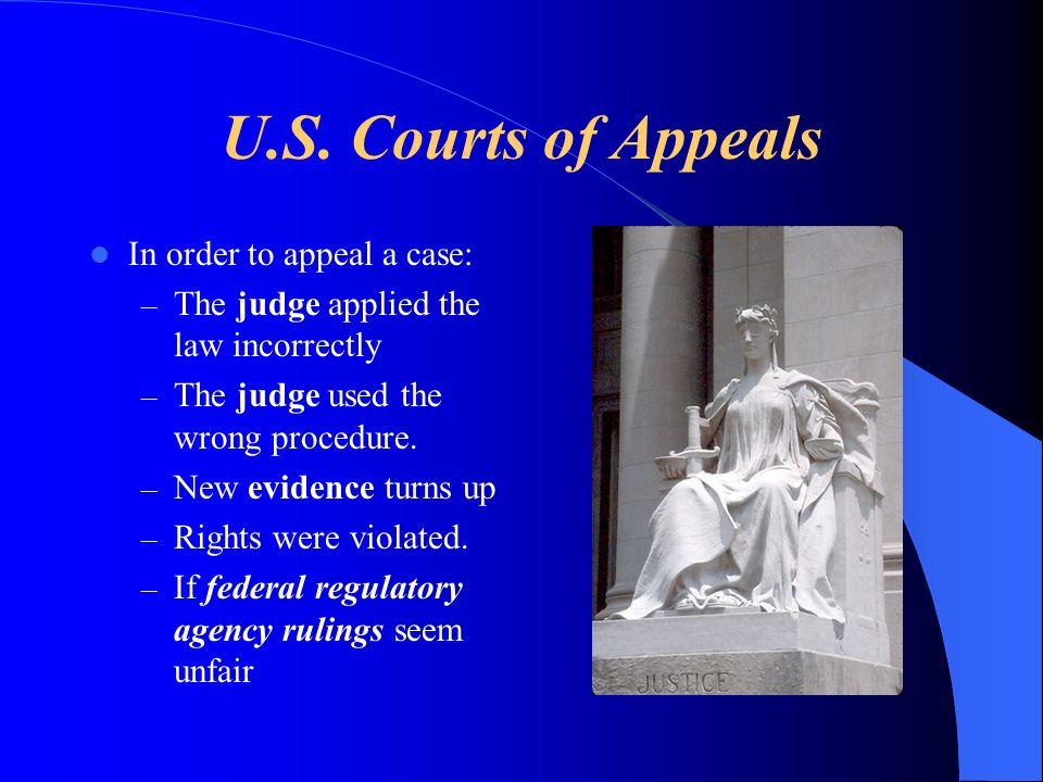 U.S. Courts of Appeals In order to appeal a case: – The judge applied the law incorrectly – The judge used the wrong procedure. – New evidence turns u