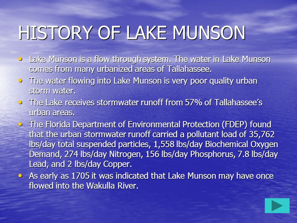 HISTORY OF LAKE MUNSON Lake Munson is a flow through system. The water in Lake Munson comes from many urbanized areas of Tallahassee. Lake Munson is a