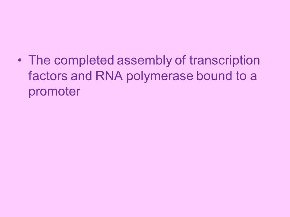 The completed assembly of transcription factors and RNA polymerase bound to a promoter