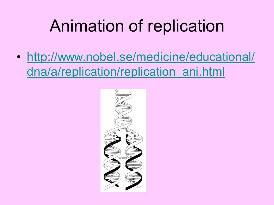 Animation of replication http://www.nobel.se/medicine/educational/ dna/a/replication/replication_ani.htmlhttp://www.nobel.se/medicine/educational/ dna